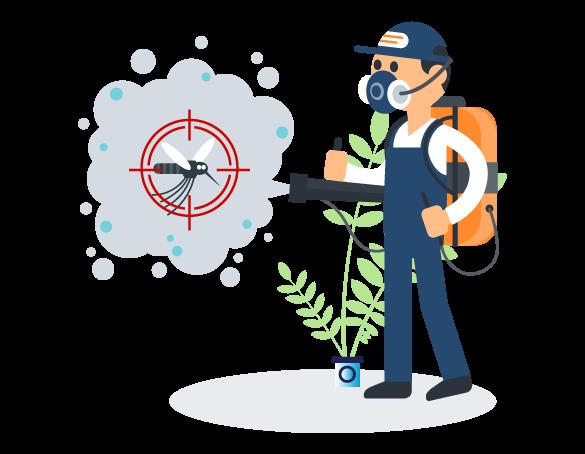 Professional Pest Control Ormeau